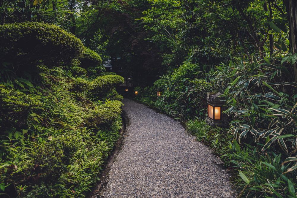 和田屋のお庭