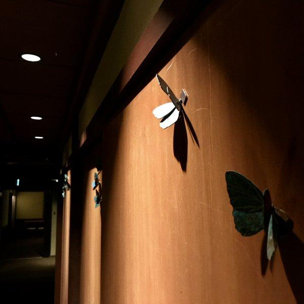 館内に蝶が飛んでいます。