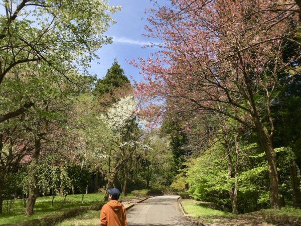 当屋から歩いて10分の「樹木公園」。