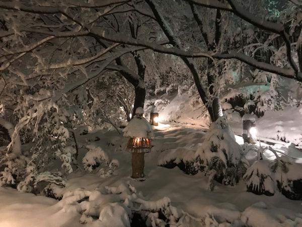 お玄関前の雪景色